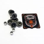 Abec-11 Skate Bearing Kit