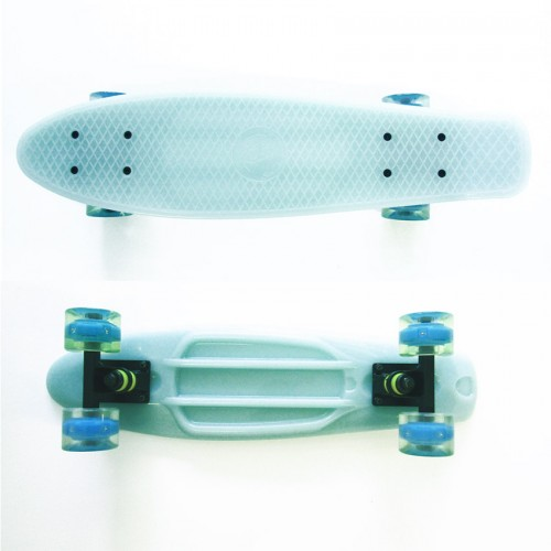 Plastic skateboard 22.5'' Blue that Glows in the dark with Led wheels  Fish