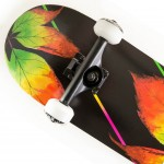 Skateboard 31'' Fall Fish