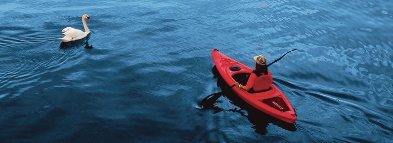 Find your kayak through a wide variety of stock products
